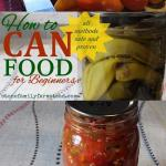 "home canned peppers and salsa with the title ""How to can food for beginners"""