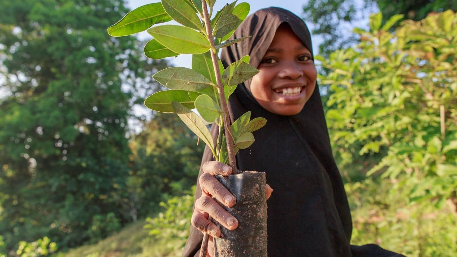 Image: Young girl holding up a sapling tree ready for planting