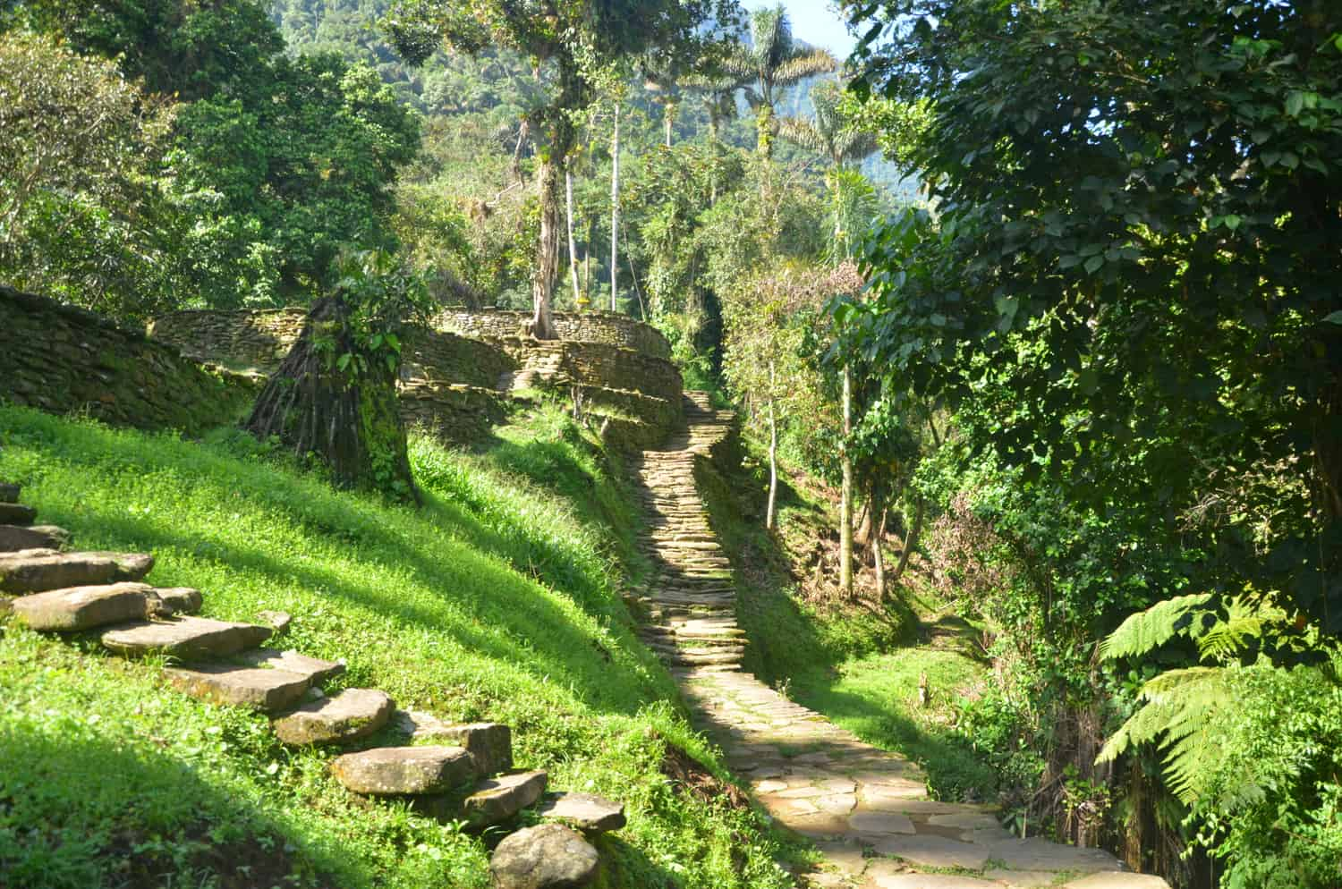 The Lost City Trek Colombia Fendaux