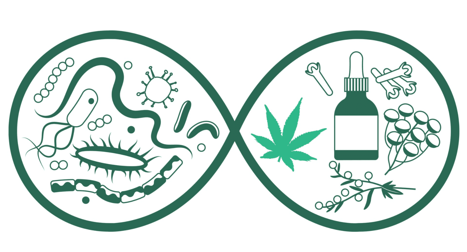CBD boosts effectiveness of antibiotics