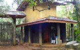 visit_sinharaja_06184