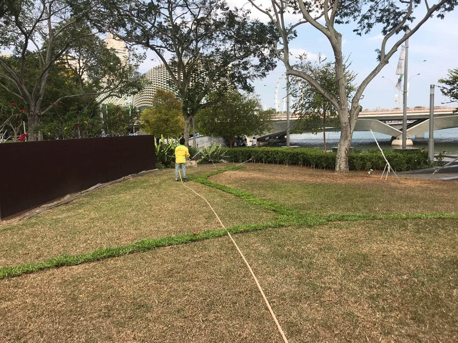 Re-Turfing after Events
