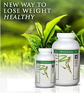 Green Tea Lose Weight