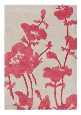 FB-Floral-300-Poppy-039600