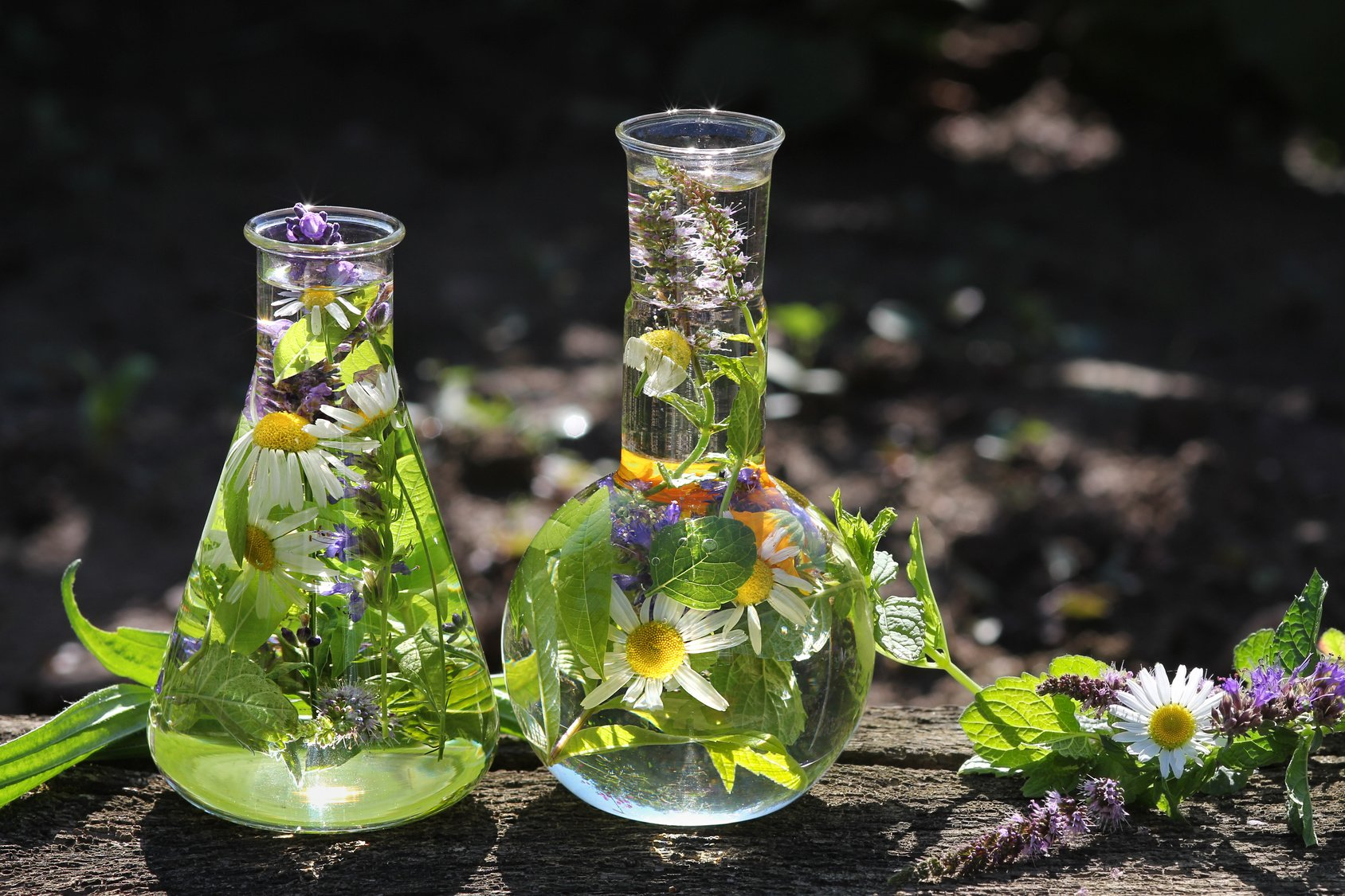 Glaskolben mit Heilkräutern