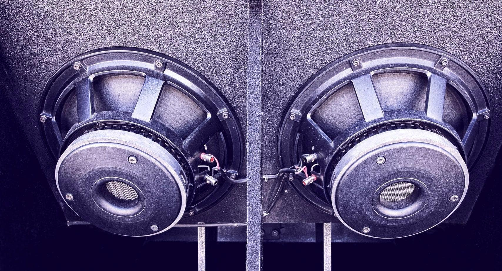 two close up car audio subwoofers