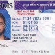 Illinois Temporary Driver's License