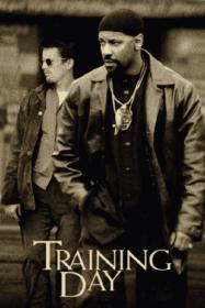 Training Day เทรนนิ่ง เดย์ ตำรวจระห่ำ (2001)