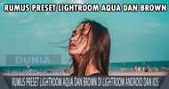 Rumus Preset Lightroom Aqua dan Brown di Lightroom Android dan IOS