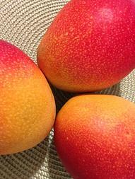 health benefit of mango