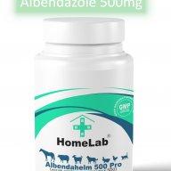 Albendazole 500