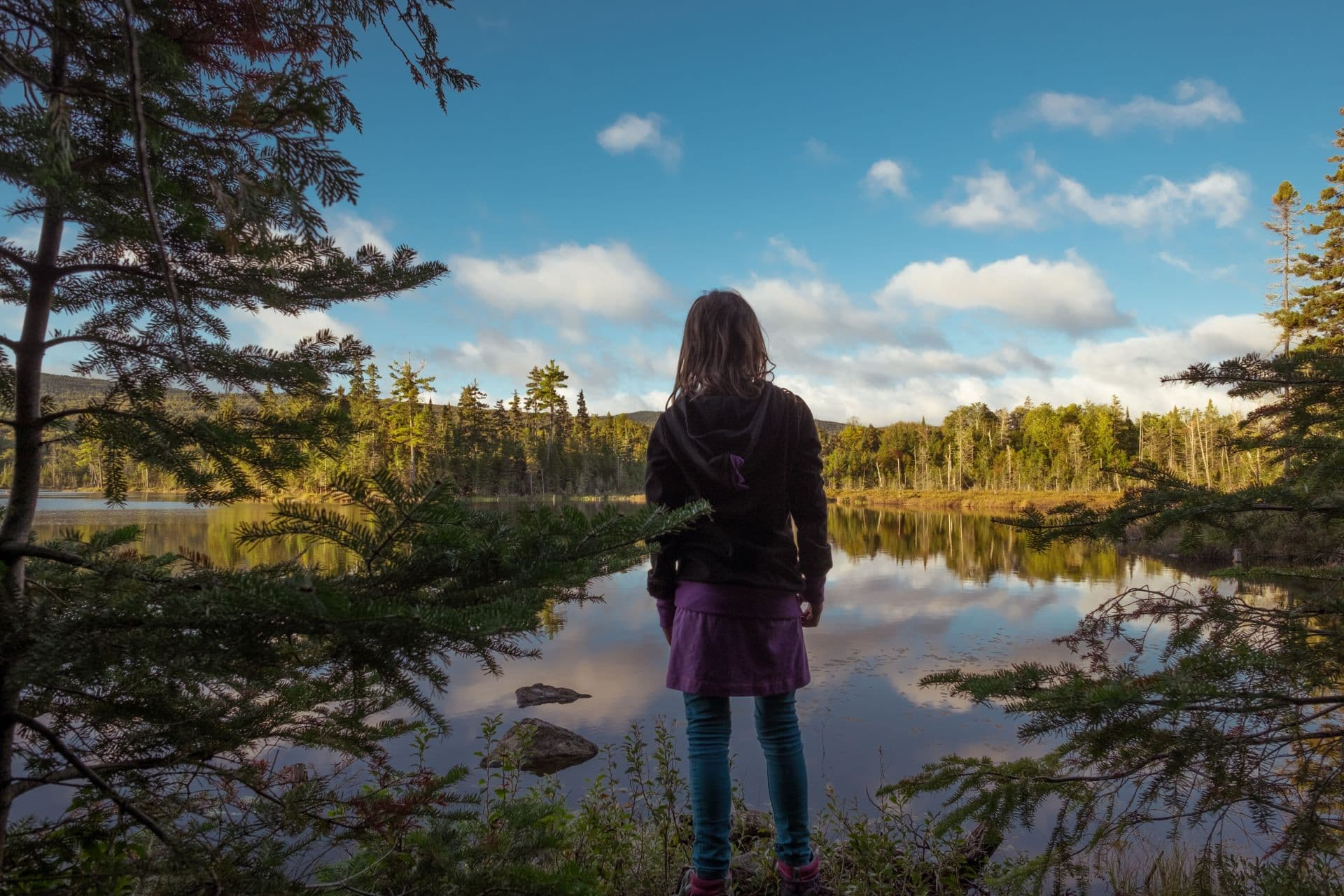 Municipalité de Ferme-Neuve - Nature et Lacs