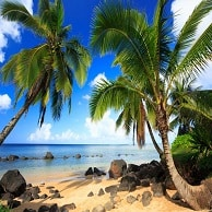 vacanze hawaii booking rent holiday