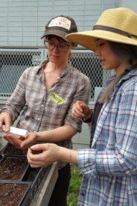 school gardens seed education