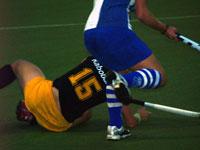 image: Forward dames houden Den Bosch op een gelijkspel