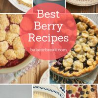 Come see some of my favorite ways to use berries in desserts, breads, and more. 40 recipes to fuel your berry baking all season long! - Bake or Break