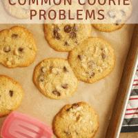 How to Prevent Common Cookie Problems bakeorbreak.com