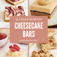 10 Crave-Worthy Cheesecake Bars bakeorbreak.com