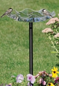 beautiful glass bird bath with birds perched on the side of it.