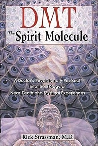 DMT, The Spirit Molecule: A Doctor's Revolutionary Research into the Biology of Near-Death and Mysical Experiences - Rick Strassman