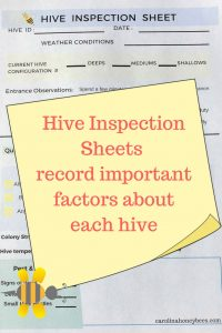 Hive Inspection Sheets record important details.