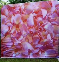 Rose petals pillowcase backdrop photo booth