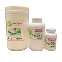 beginner's kratom capsules, Beginner's Kratom Capsules (500mg) 1.2-1.4% Alkaloid, Buy Kratom Online - the evergreen tree |, Buy Kratom Online - the evergreen tree |