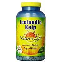 Nature's Life Kelp Tablette