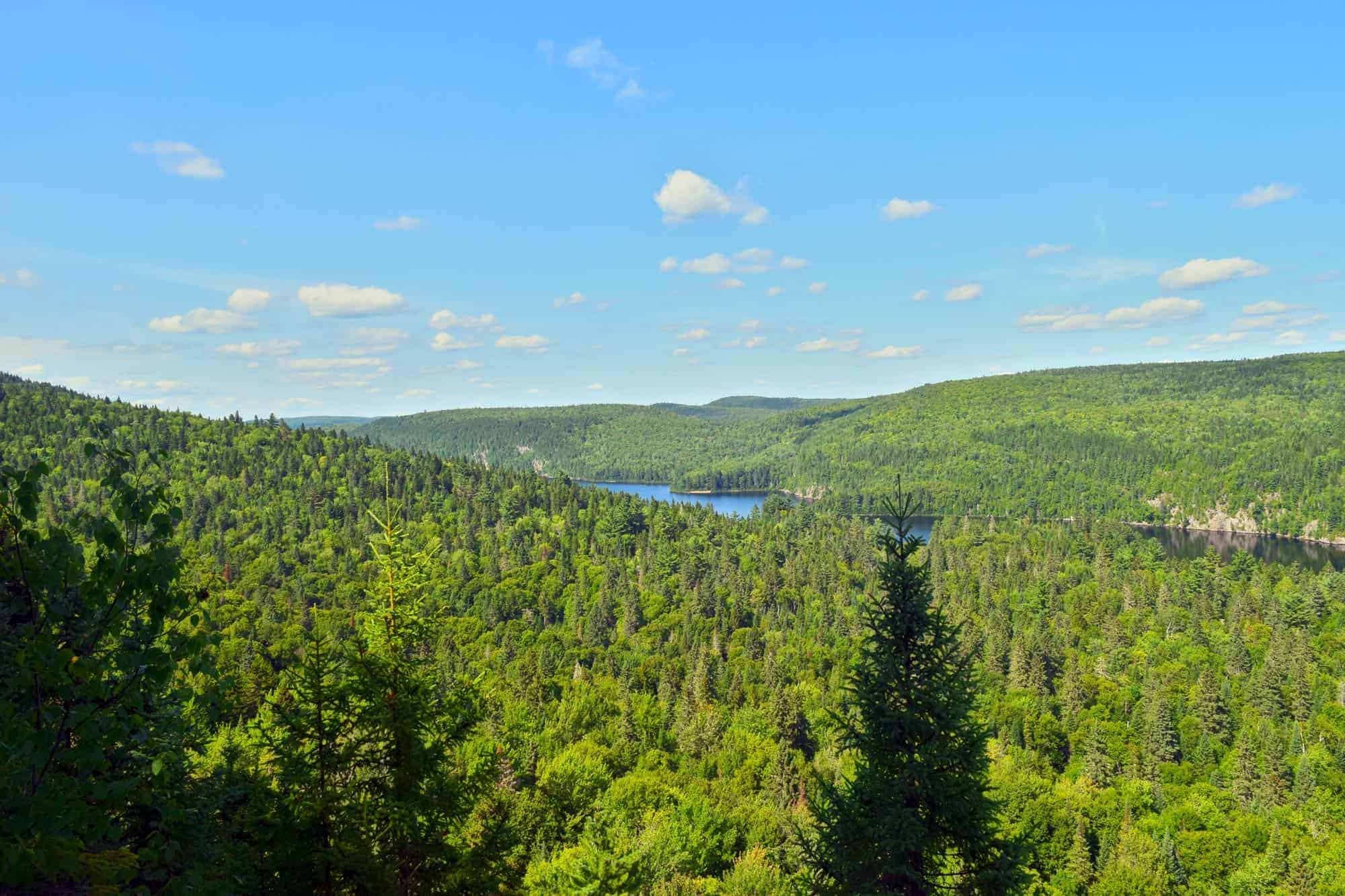 Top 5 Provincial Parks Near Montreal