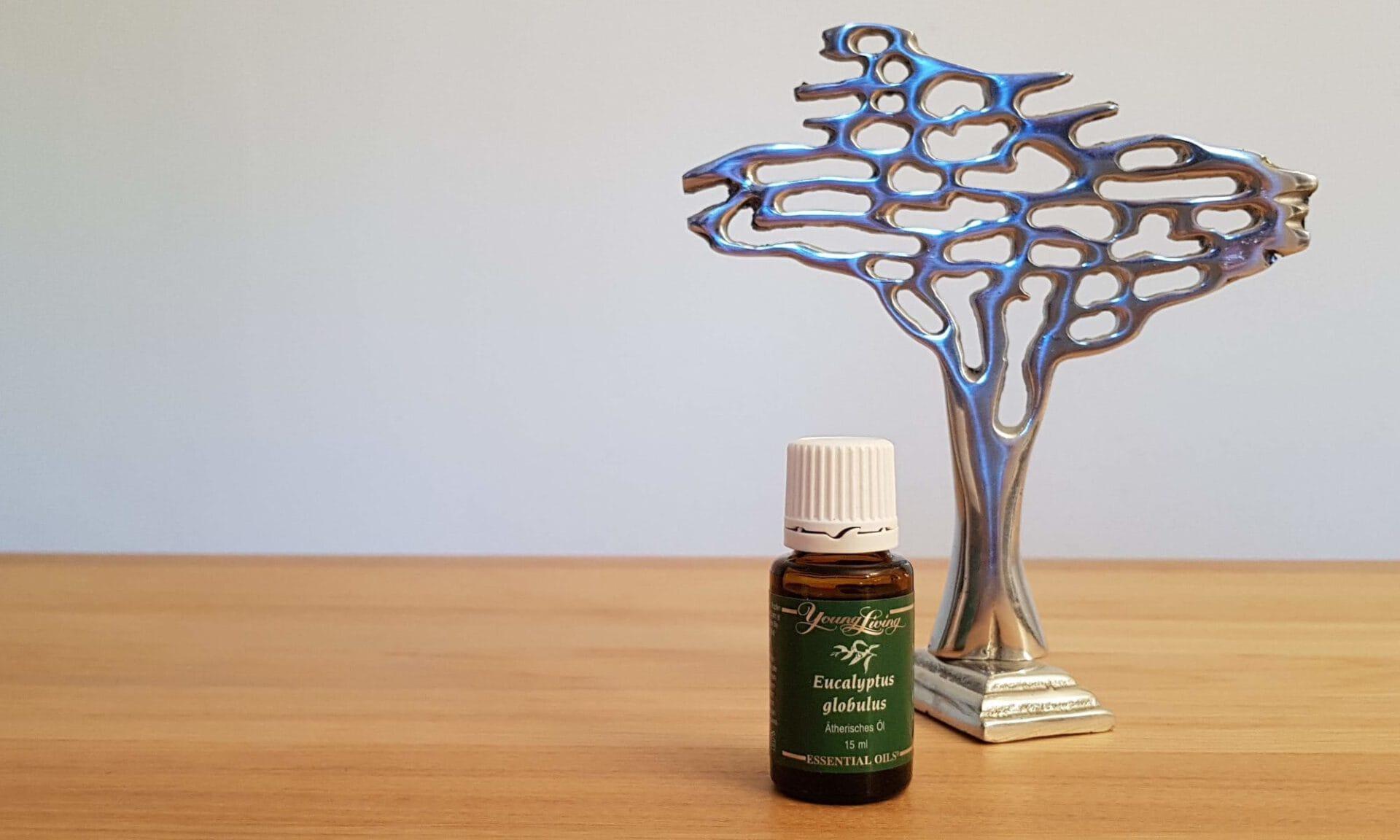 Eucalyptus globulus ätherisches Öl von Young Living und Lebens-Essenz-Baum