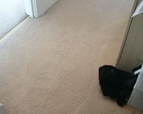 Carpet Cleaning Company Bristol
