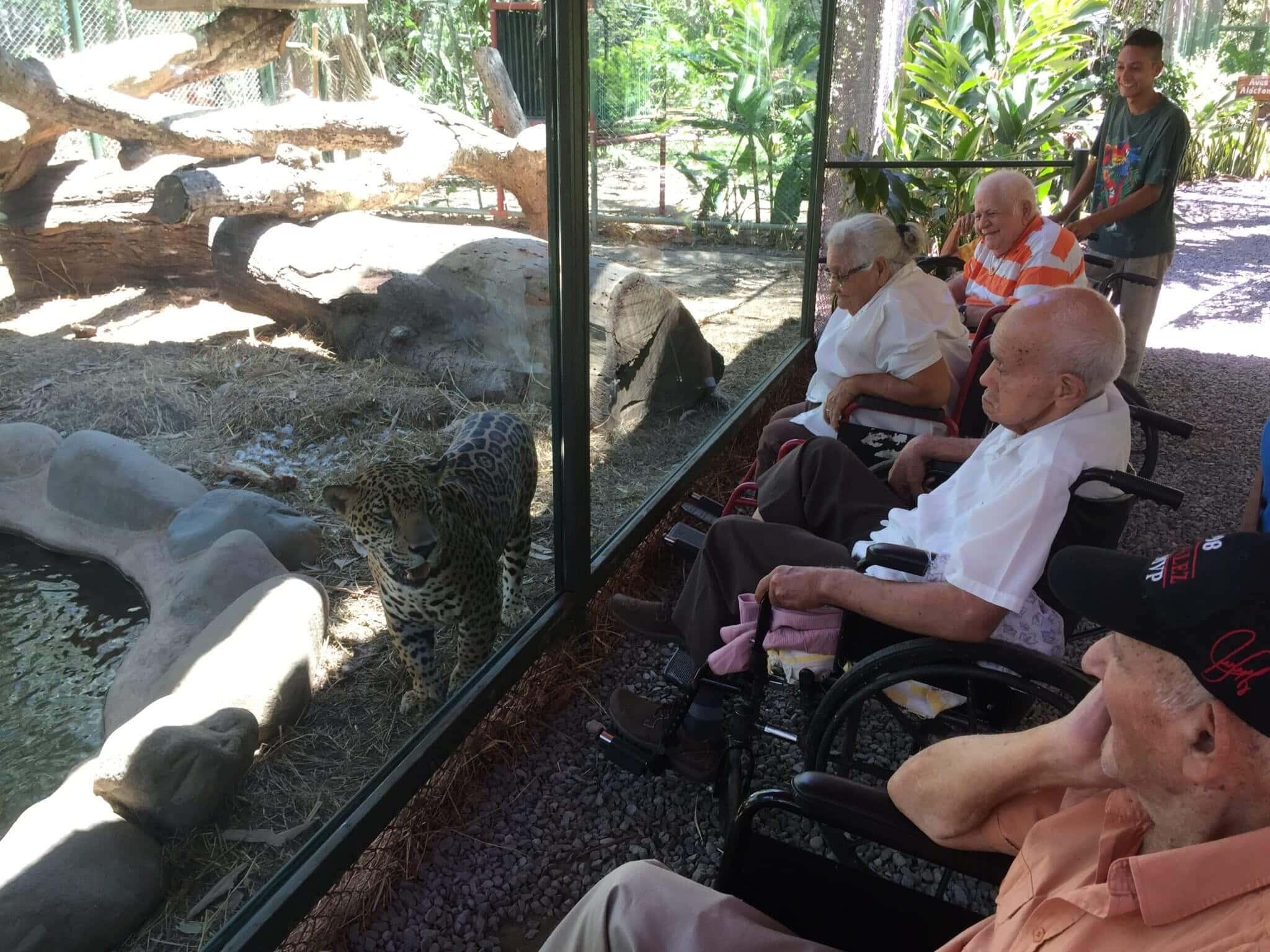 Visita de Adultos mayores .