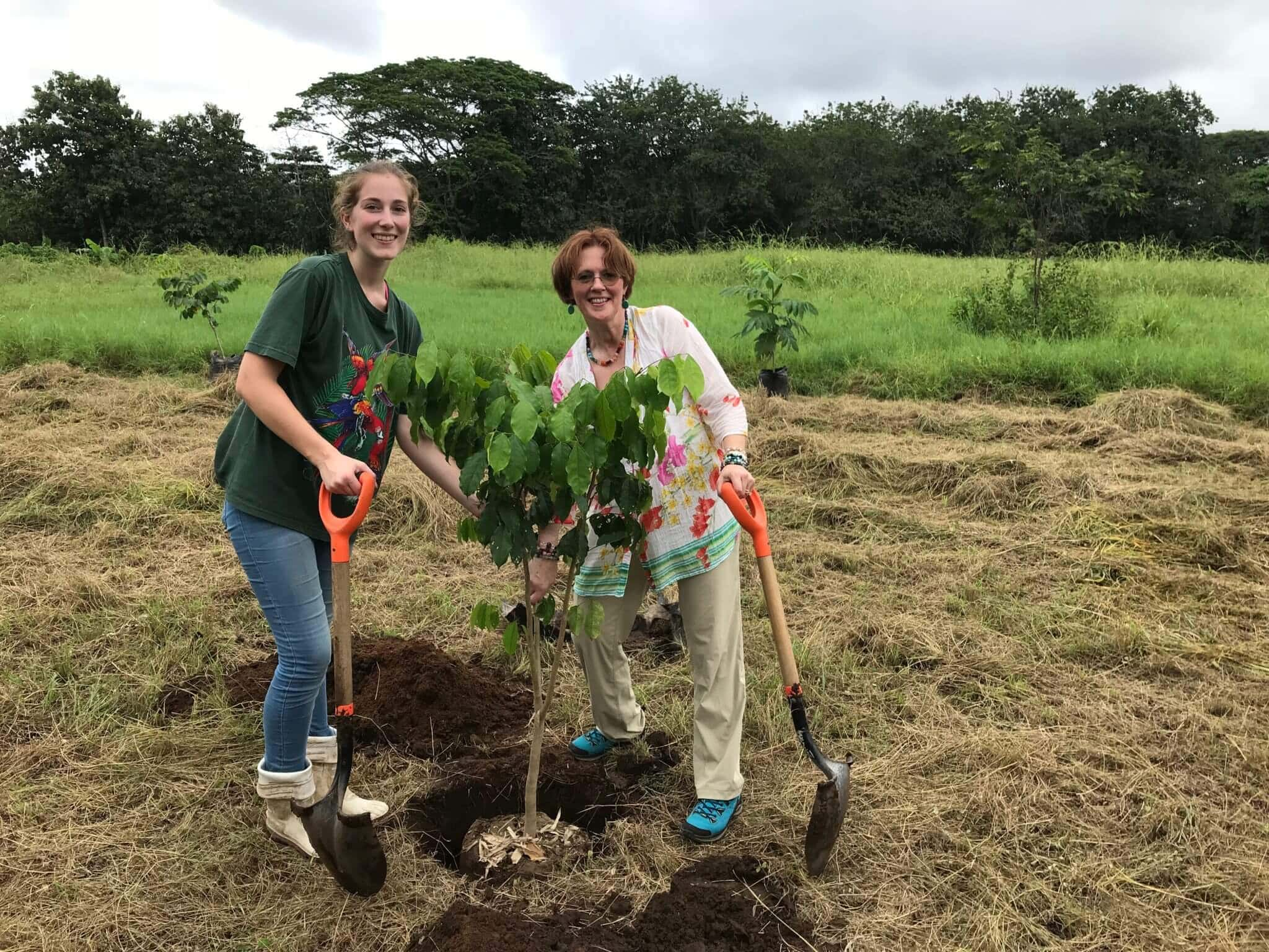 Festejando el Día del árbol en NATUWA Costa Rica
