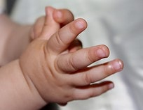 lebendige Hände