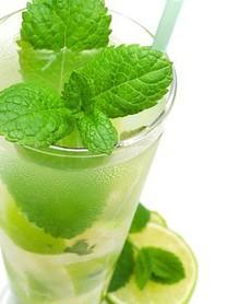 Mojito Drink Image