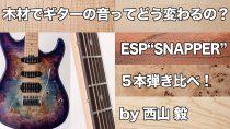 ESP SNAPPER弾き比べ