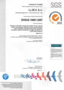 SGS OHSAS 18001:2007