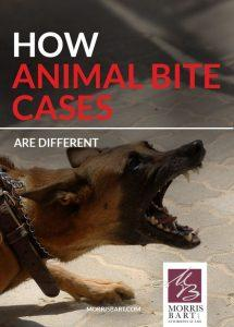Animal Bite Injury: Can I Be Compensated?