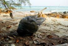 sprzątanie wyspy Pulau Babi Besar w Malezji