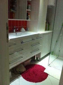 veliki ormarić za kupatilo saa duplim fioakma