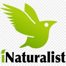 INaturalist in Ecuador