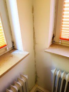 Schimmel in Wandecke & Fensterleibungen