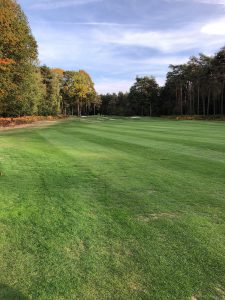 Royal Golf Club du Hainaut, Les Etangs, Fairway Trou 8