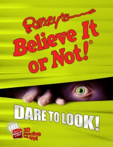 Dare To Look Book Cover