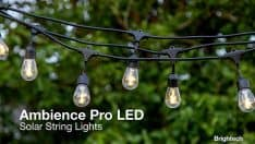 Brightech Ambience Pro Solar LED String Lights