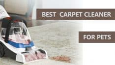 10 Best Carpet Cleaners for Pets in 2020