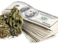 Budget Deficit to Be Filled-in by Taxes From Eugene Marijuana Sales