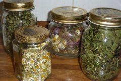 fiori ed erbe orto biologico