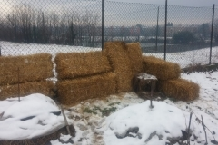 orto paglia neve