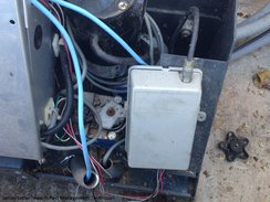 Electric motor box invaded by ants
